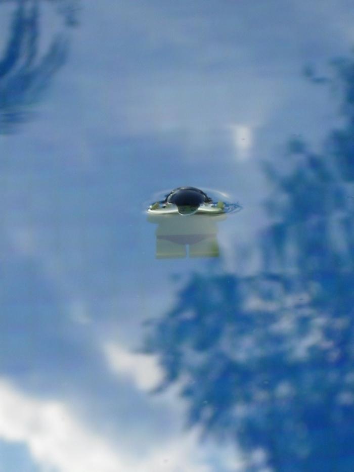 Les Photos du voyage de la Minifig édition 2012 ! P11b10