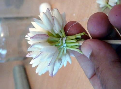 Comment faire un bouquet de jasmin...Etape par étape par moi même 0711