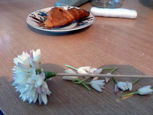 Comment faire un bouquet de jasmin...Etape par étape par moi même 0910