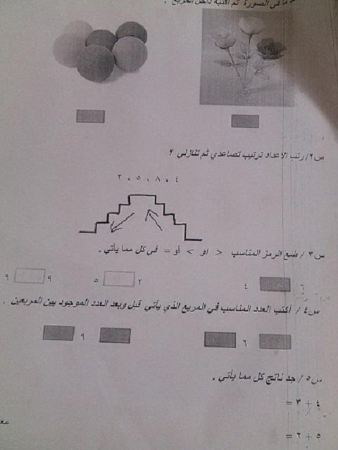 نماذج اسئلة الرياضيات التحريري للصف الاول الابتدائي فى العراق 2018 1610
