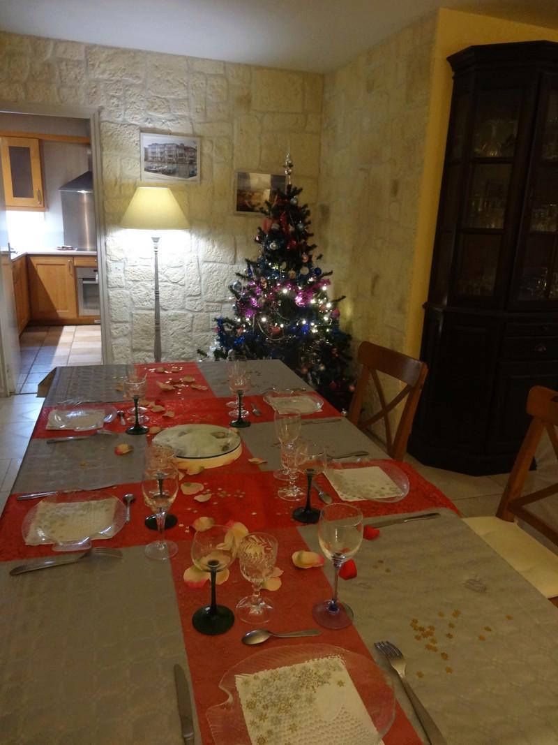 Joyeux Noël !!!!!!!!! Dsc04627