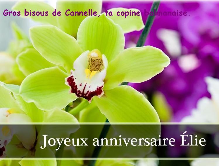 Bon anniversaire ! Elie10