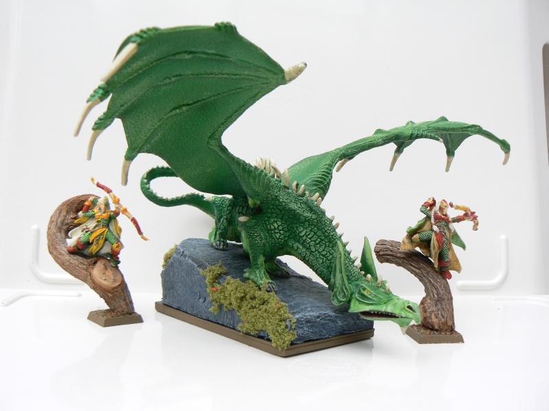 Mon Armée Elfes Sylvains Dragon10
