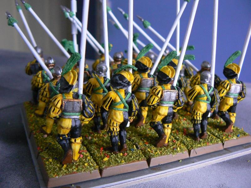 Mon armée d'Averland F_demi11