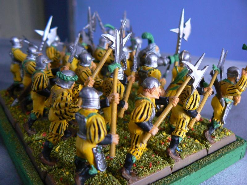 Mon armée d'Averland F_hall10