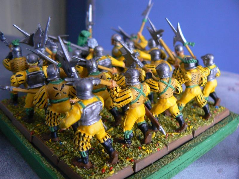 Mon armée d'Averland F_hall11