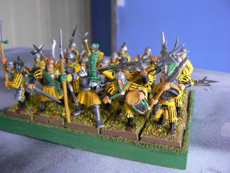 Mon armée d'Averland F_hall12