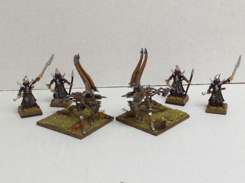 L'Armée Elfes Noir du Fiston Img_0320