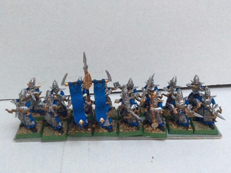 L'Armée Elfes Noir du Fiston Img_0324