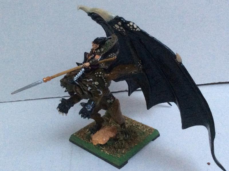 L'Armée Elfes Noir du Fiston Img_0330