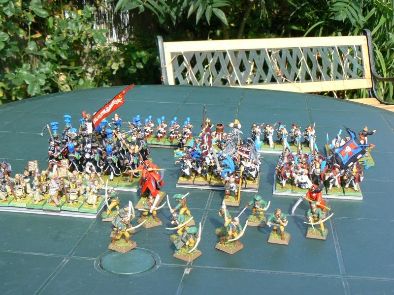 Voici mon armée d'Ostland P1060710