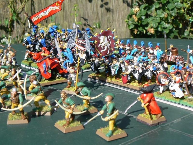 Voici mon armée d'Ostland P1060711