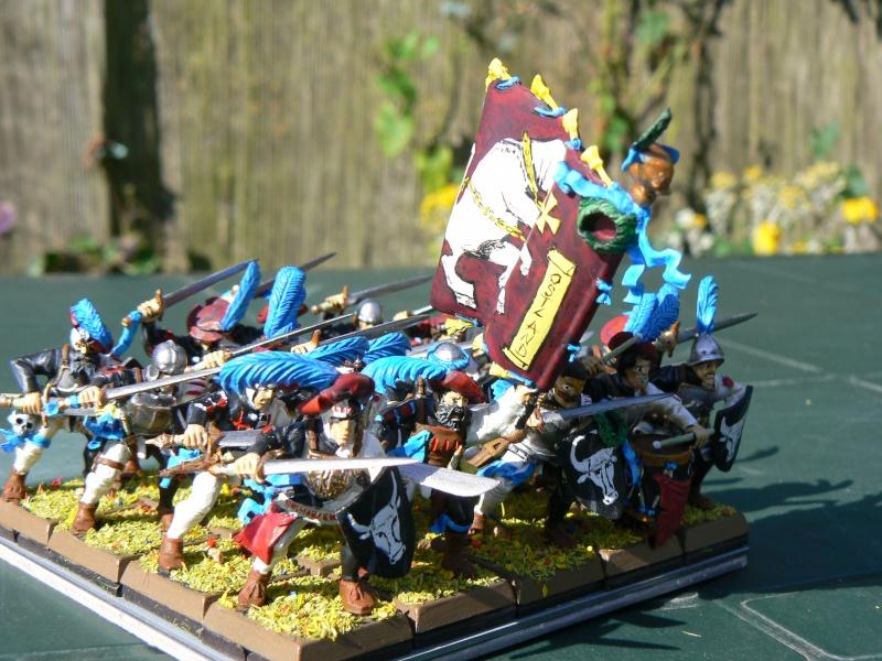 Voici mon armée d'Ostland P1060712