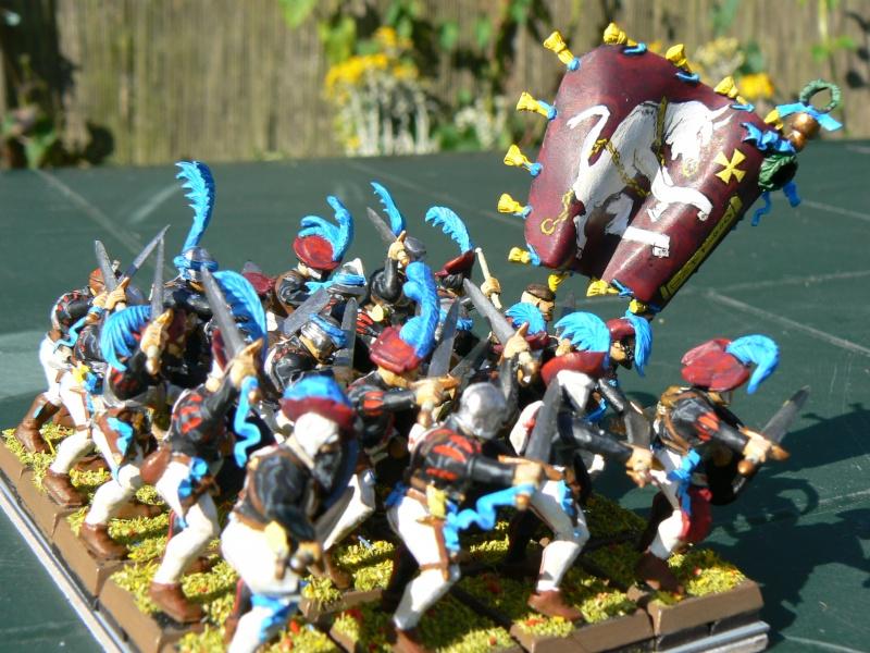 Voici mon armée d'Ostland P1060713