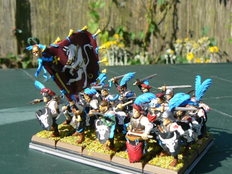 Voici mon armée d'Ostland P1060715