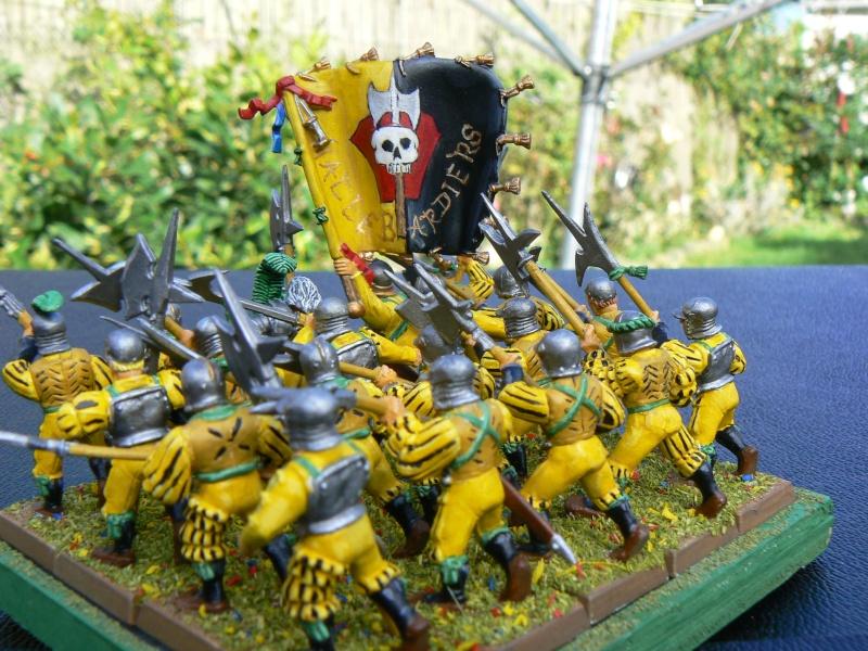 Mon armée d'Averland P1060810