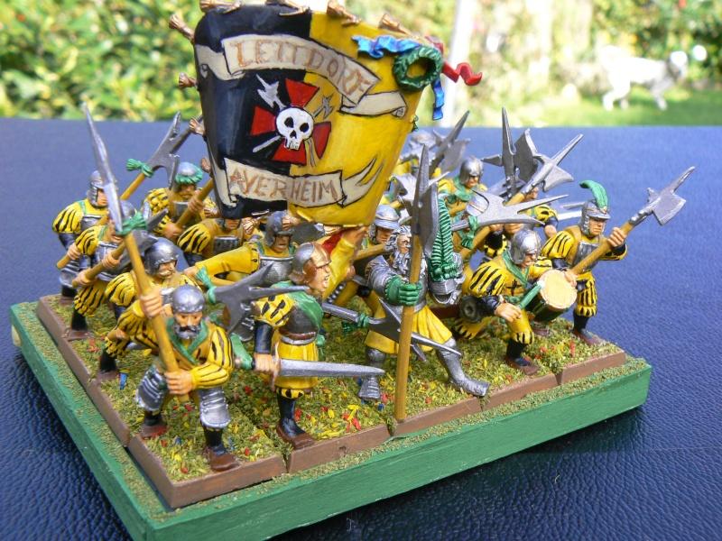 Mon armée d'Averland P1060811