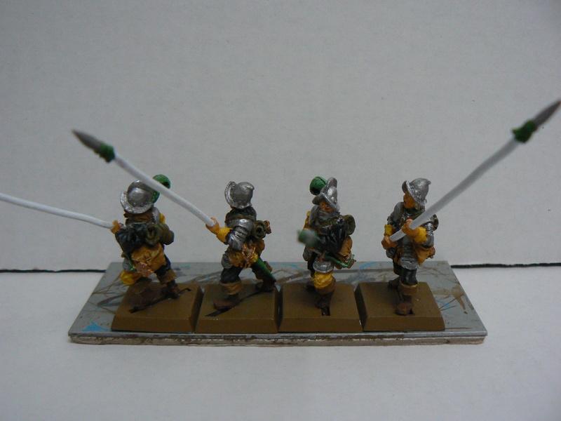 Mon armée d'Averland - Page 3 P1140521