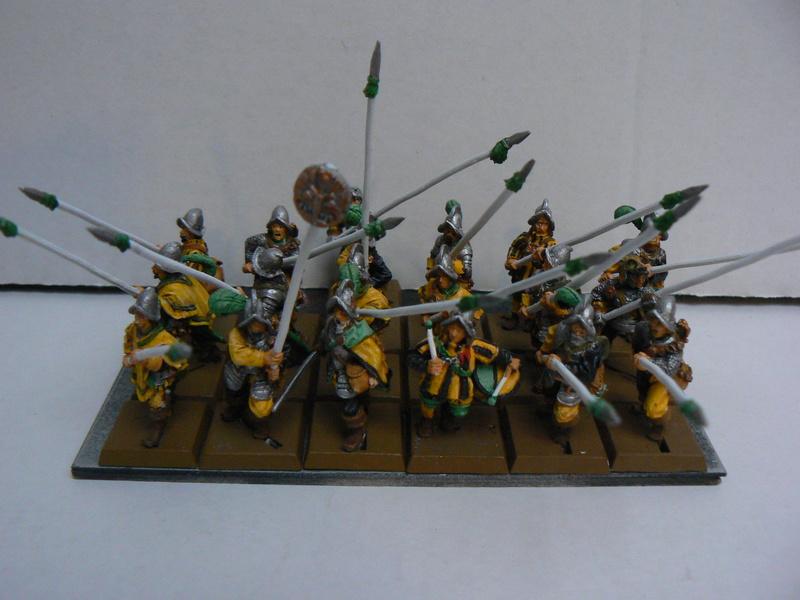 Mon armée d'Averland - Page 3 P1140524
