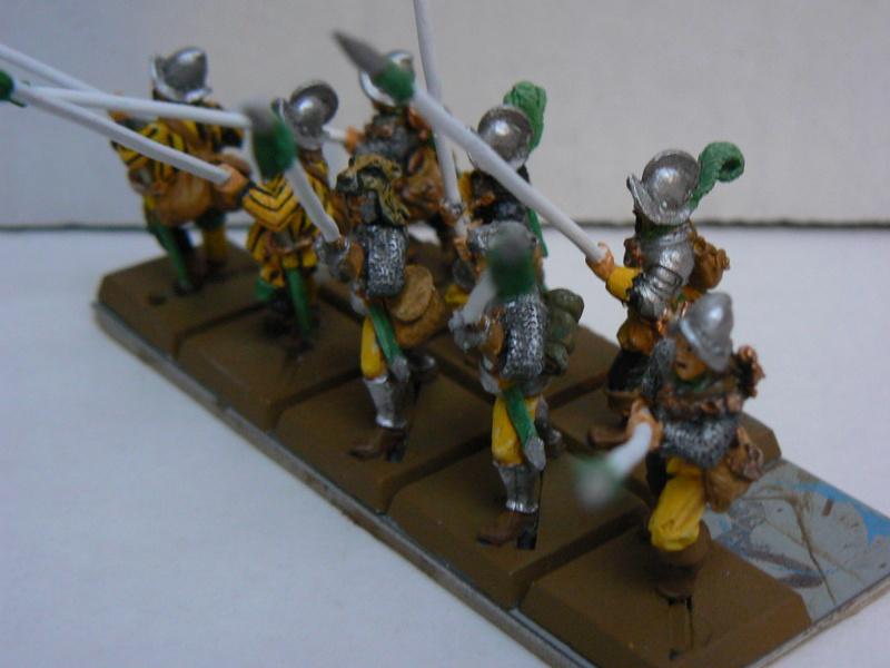 Mon armée d'Averland - Page 3 P1140525
