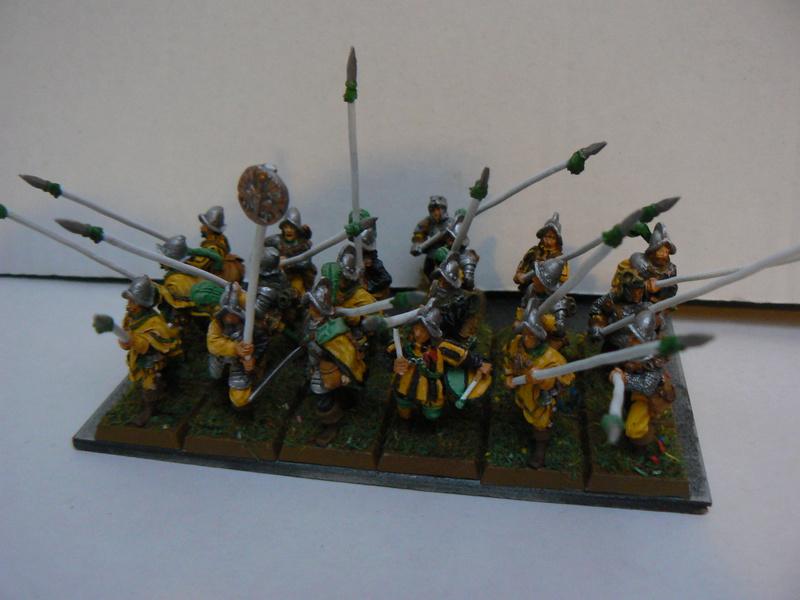 Mon armée d'Averland - Page 3 P1140529