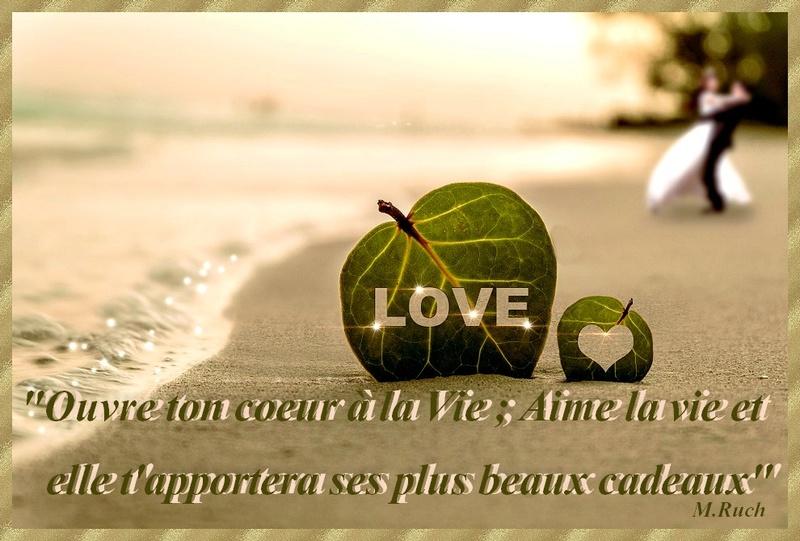 envole toi par delà les mots - Page 23 Love10