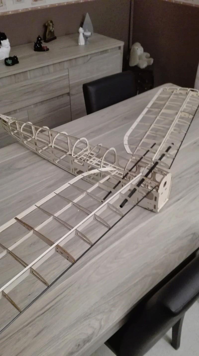 construction du tiger moth Img_2016