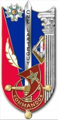 Jean Lartéguy choisi comme parrain par la nouvelle promotion du 4e bataillon de Saint-Cyr 15617510