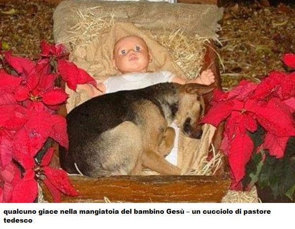 NATALE Natale13