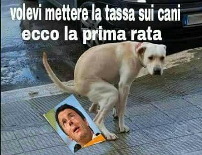 Renziadi..........ecc ecc - Pagina 5 Renzi11