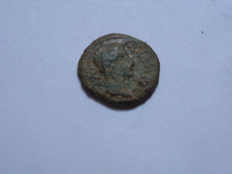 Semis de Caesar Avgvsta (por Avgvsto) Hpim2712