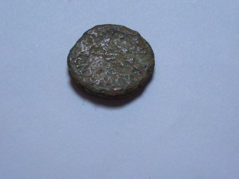 Semis de Caesar Avgvsta (por Avgvsto) Hpim2713