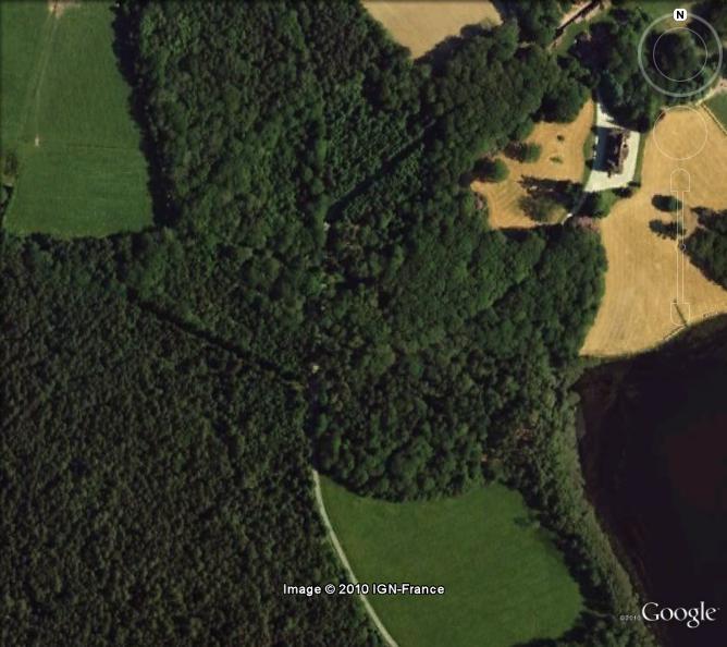 [Résolu] - Forêt de Brocéliande - Paimpont - Ille-et-Vilaine Dafi10