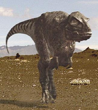 Tyrannosaurus Rexy10