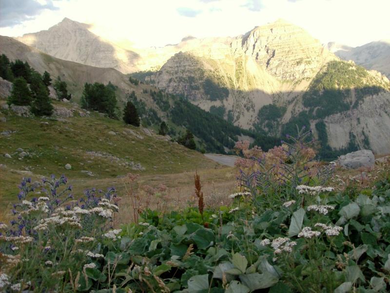 Escapade dans les Alpes du sud Le_col13
