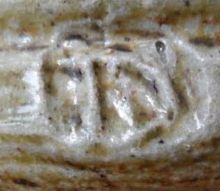 Kotuku Pottery - ( Ian Dalzell & Sue Pidgeon ) Ian_da11