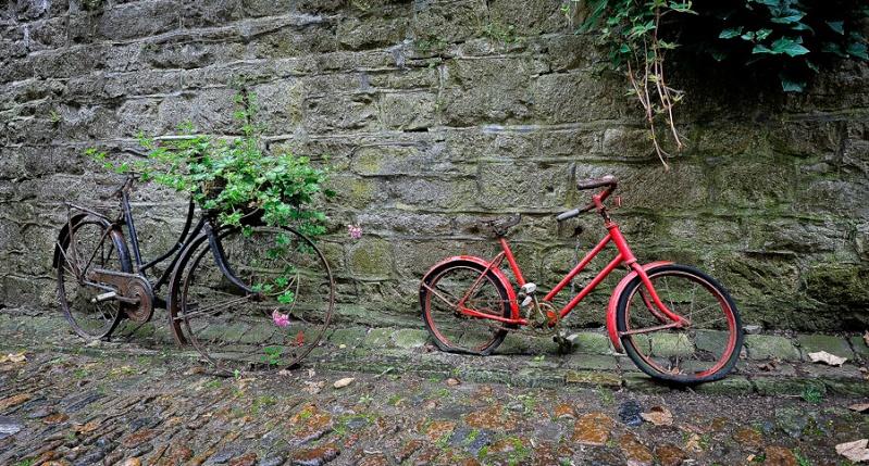 Sortie Hottolfiades - Montgoflières Hotton - 22 août 2010 : Les photos _pie6611