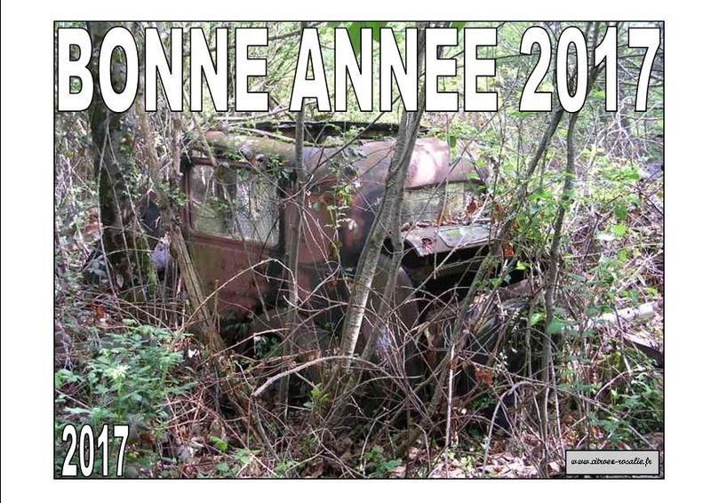 BONNE ANNEE 2017 Bonne_10