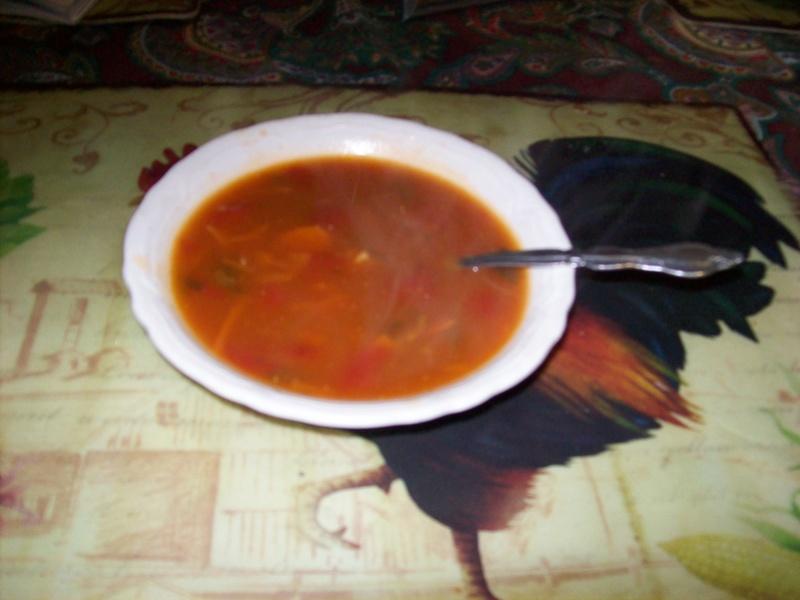 soupe aux poulet et aux nouilles  (légumes ) 101_0119