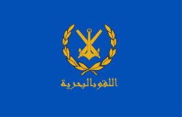 + MARINE de SYRIE + Flag_o10