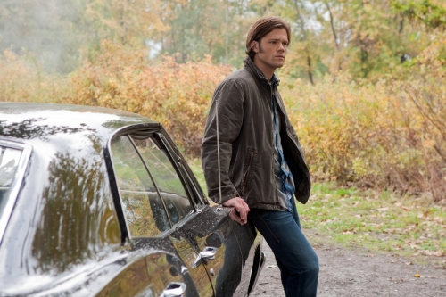 Jared Heart : Jared Padalecki Fans Club - Portail 5632210