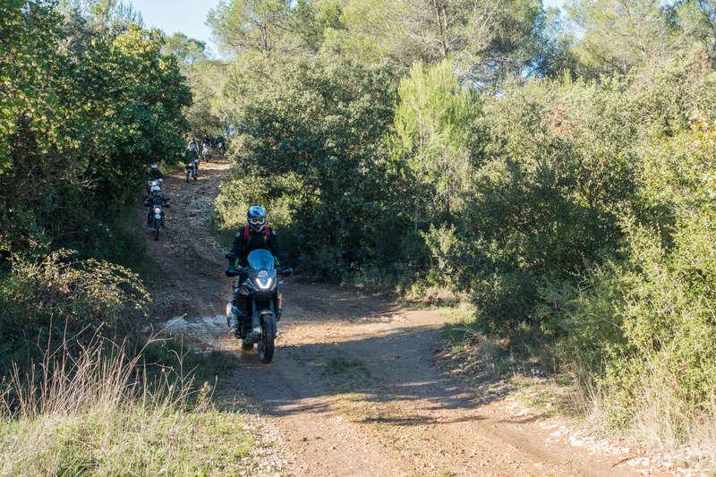 Sortie facile pour débutants le 6 novembre dans le Gard - Page 5 Dsc_0013