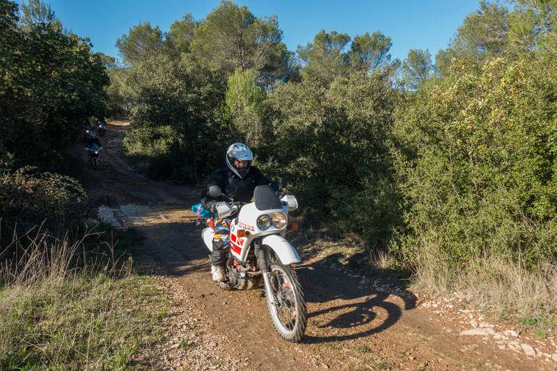 Sortie facile pour débutants le 6 novembre dans le Gard - Page 5 Dsc_0017