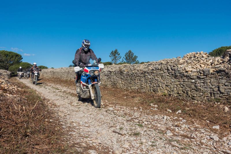 Sortie facile pour débutants le 6 novembre dans le Gard - Page 5 Dsc_0027