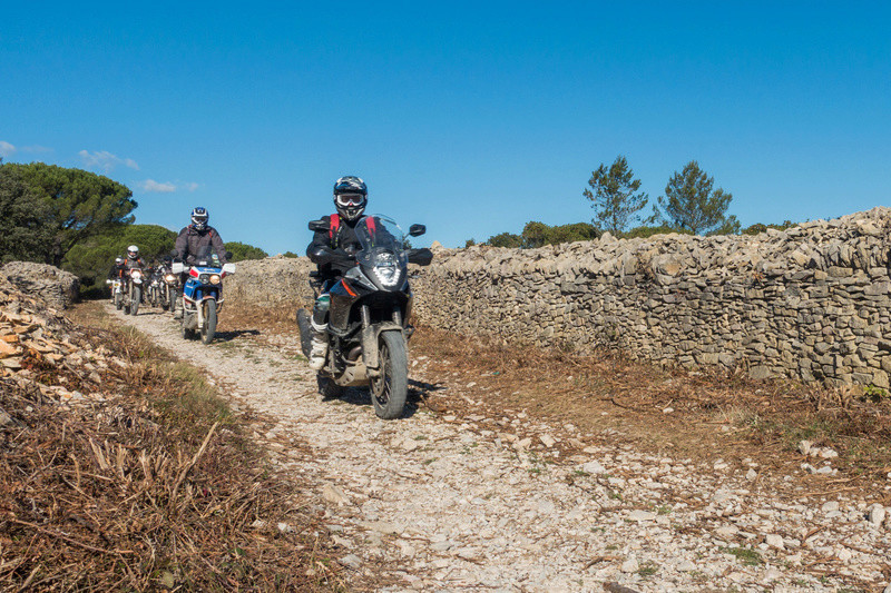 Sortie facile pour débutants le 6 novembre dans le Gard - Page 5 Dsc_0028