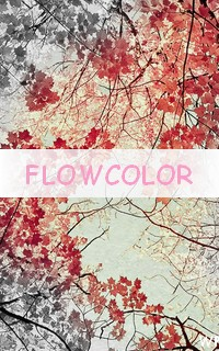 Flowcolor