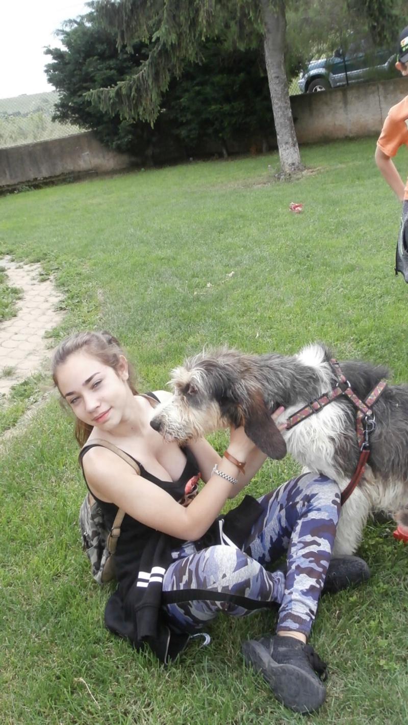 Rando chien 5 P6177612