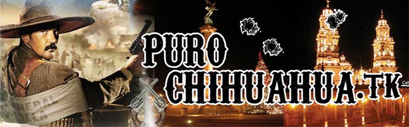 PuroChihuahua