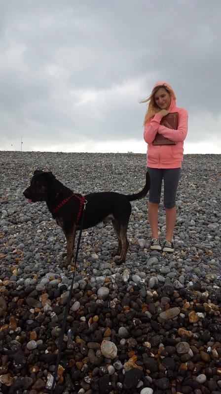 Éros, croisé Labrador 20161011