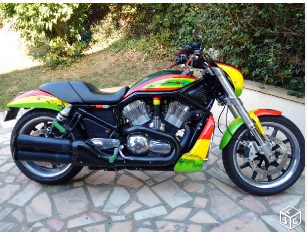 Reggae : un sujet rien que pour ! Harley10